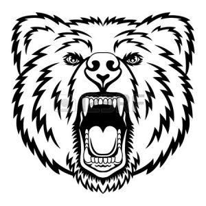 300x300 Standing Black Bear Drawing Clipart Panda Images Bdedaacdfaab Adult