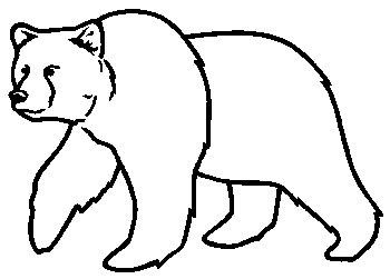 350x251 Bear Drawing