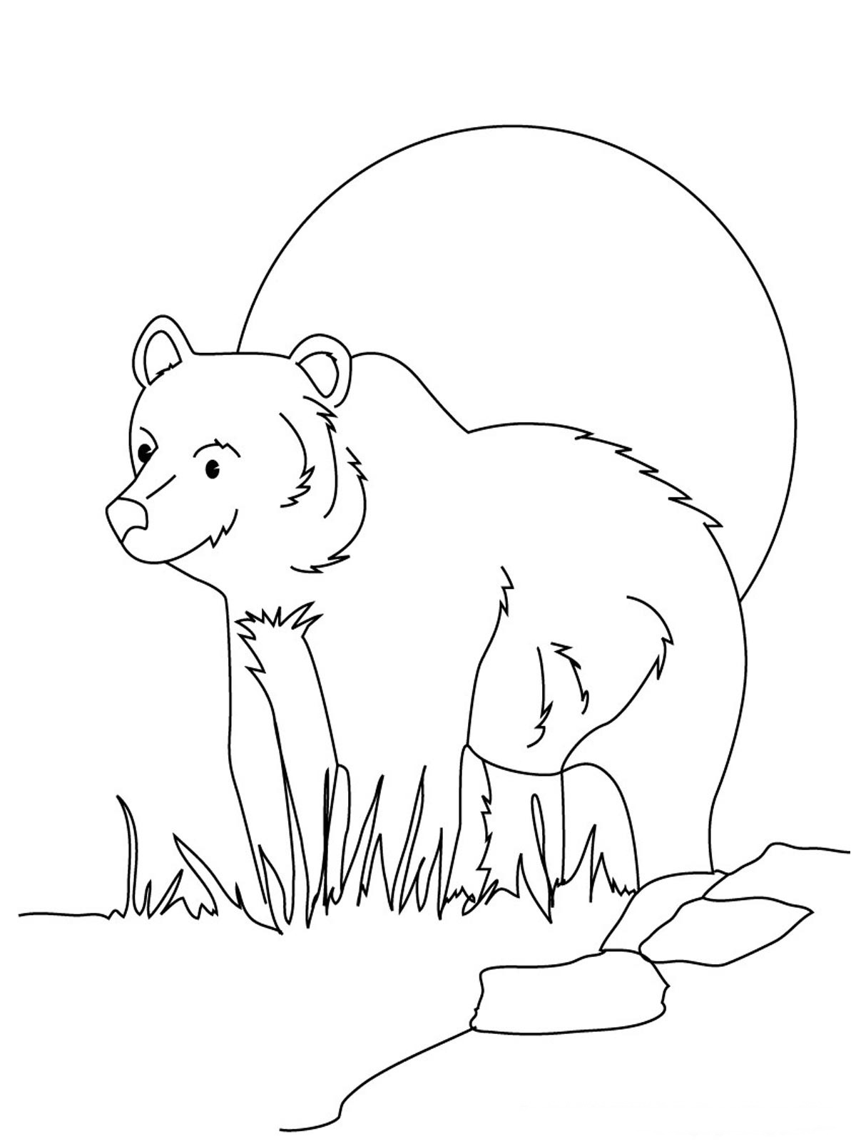 1200x1600 Grizzly Bear Coloring Pages