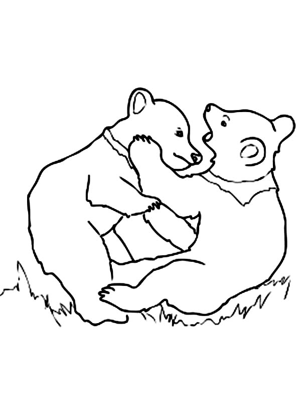 600x802 Grizzly Bear Cubs Playing Coloring Page