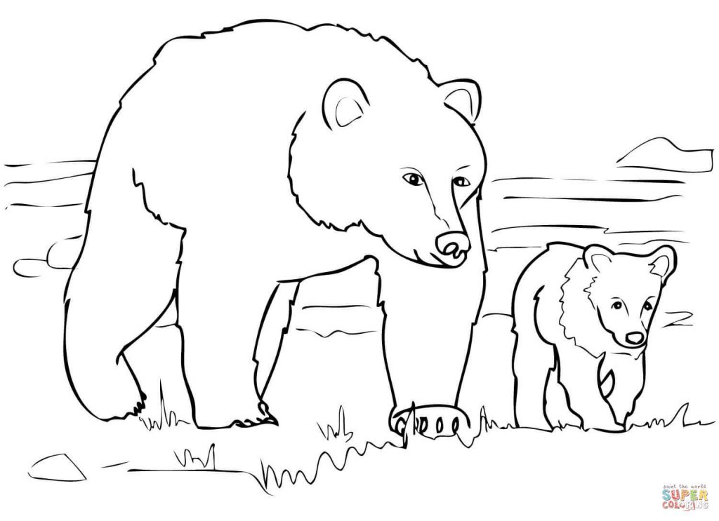 1024x743 Grizzly Bear Family Coloring Page Free Download