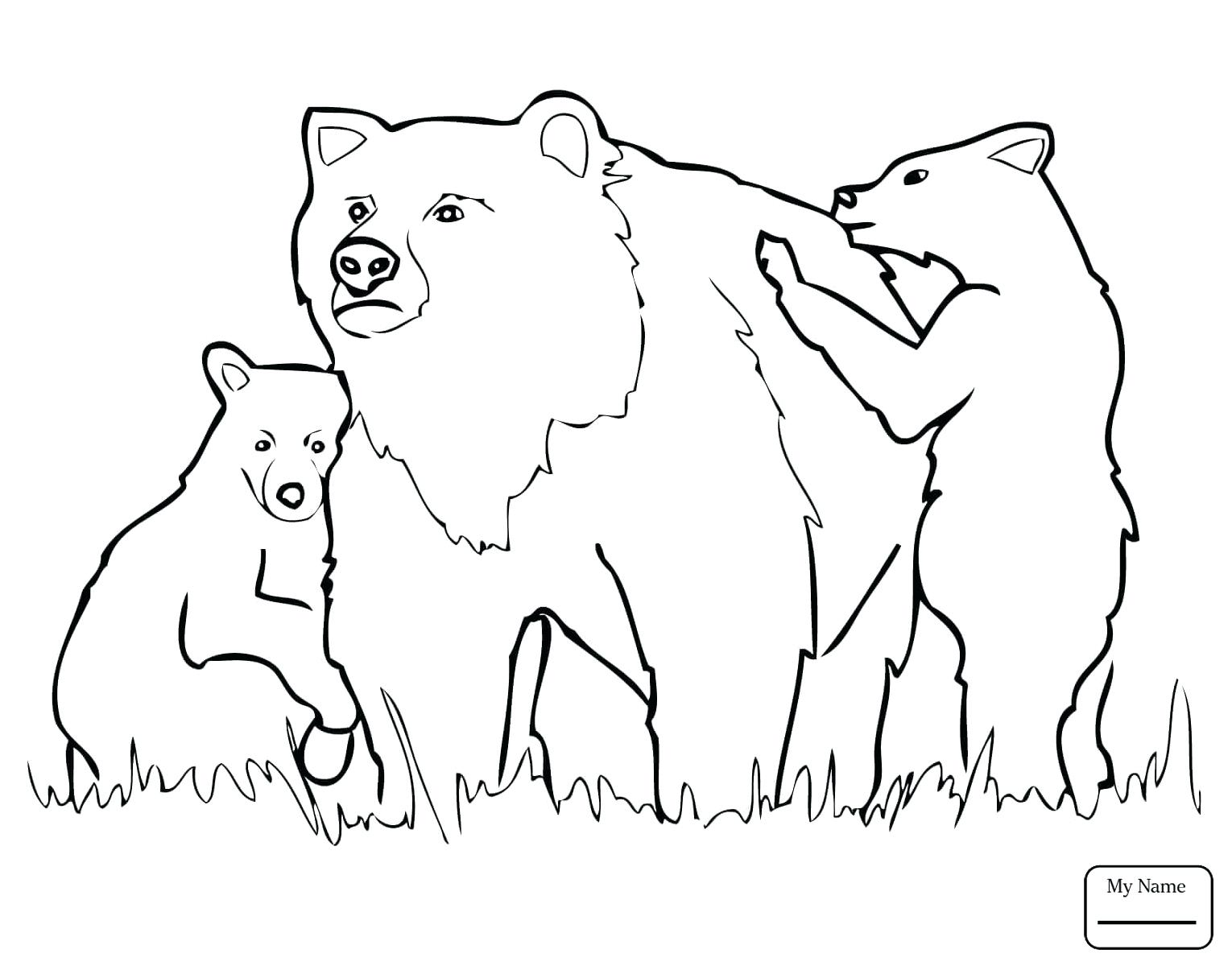 1530x1200 Anger Management Coloring Pages Bear Is Angry Page And Forest