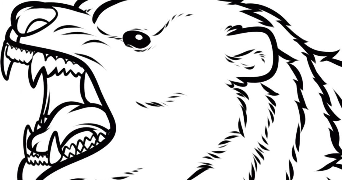 1113x585 Bear Face Drawing Wallpapers Background