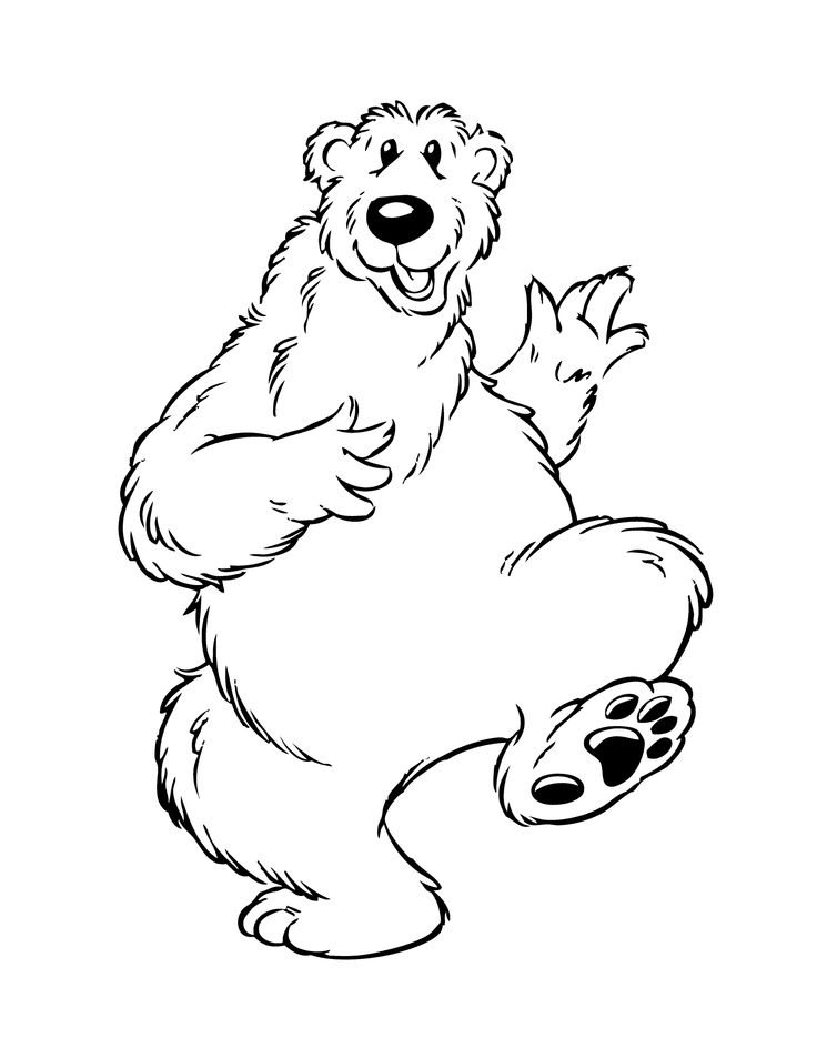 736x935 Drawing Of A Bear Drawing Of Bear Youtube. How To Draw Grizzly