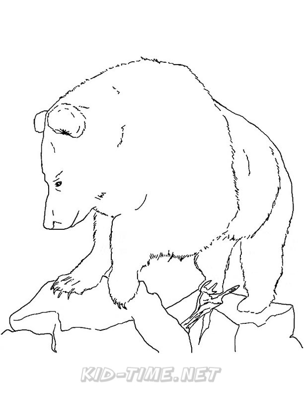 612x792 Grizzly Bear Coloring Pages 107.jpg Kids Time Free Coloring Book