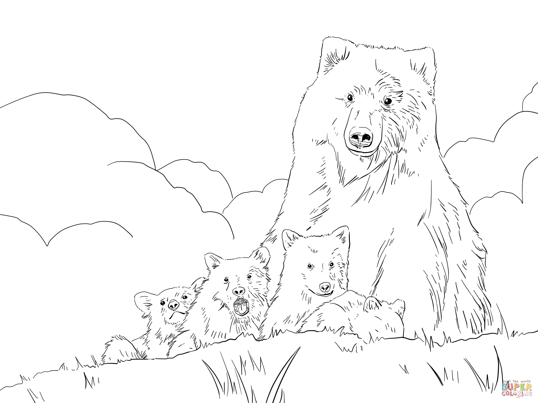 2048x1536 How To Draw A Detailed Grizzly Bear Step By Step