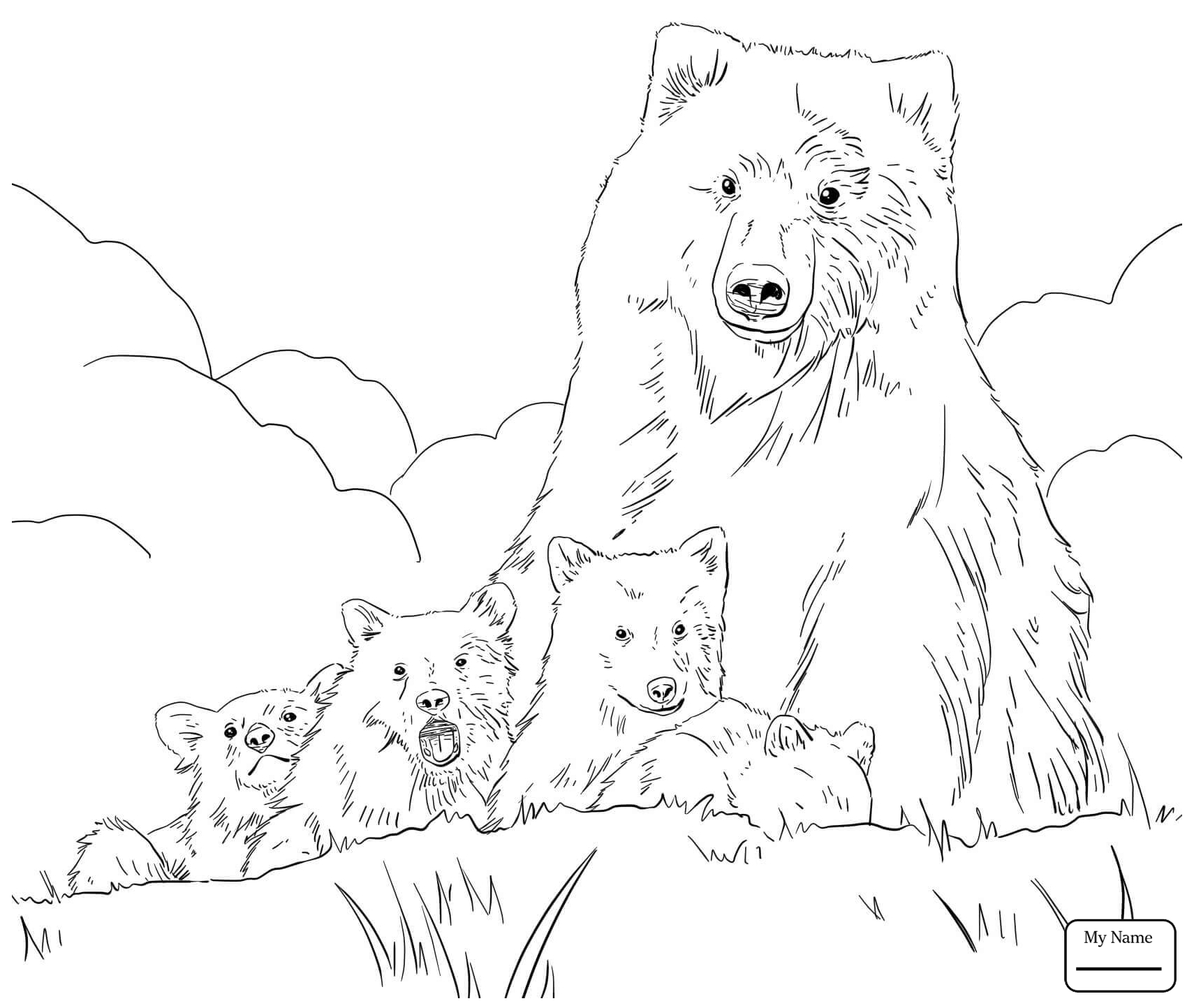 1710x1444 Mammals Grizzly Bears Alaskan Grizzly Bear Grizzly Bears Coloring