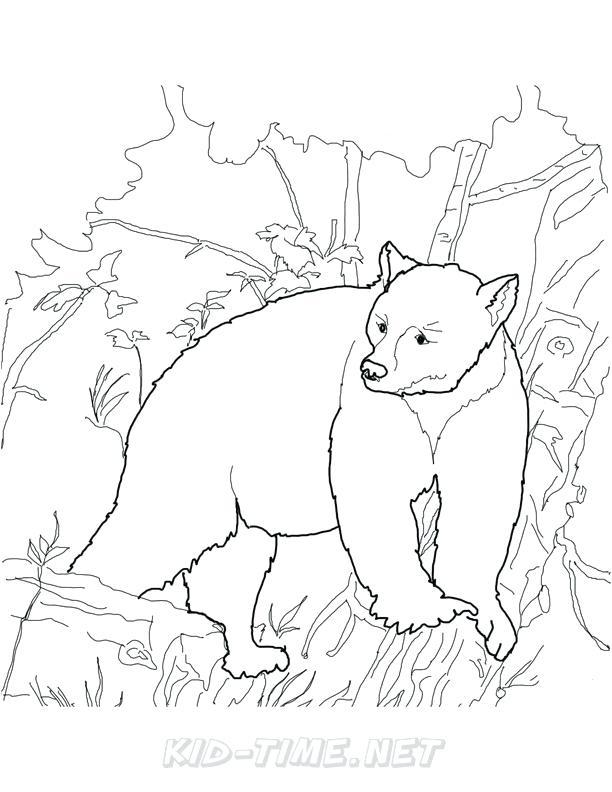 612x792 California Bear Coloring Page