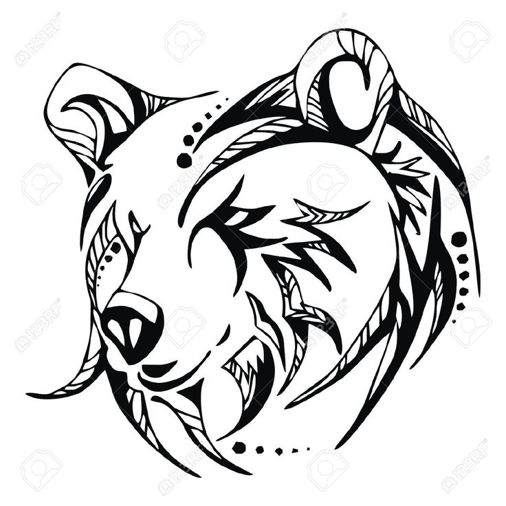 736x736 Collection Of Outline Bear Face Tattoo