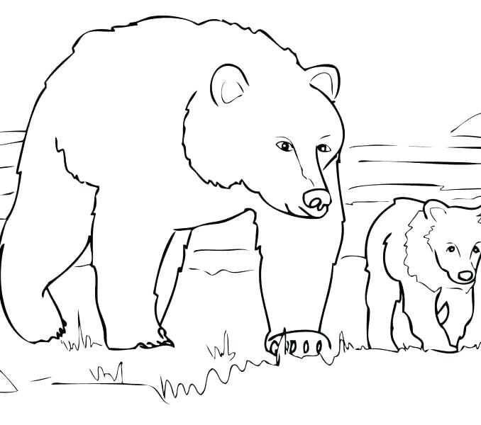 678x600 Coloring Page Of A Bear Grizzly Bear Coloring Pages In Addition