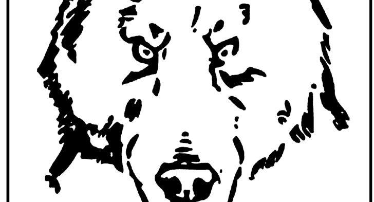 728x393 Bear Face Coloring Page Bear Face Coloring Page, How To Draw