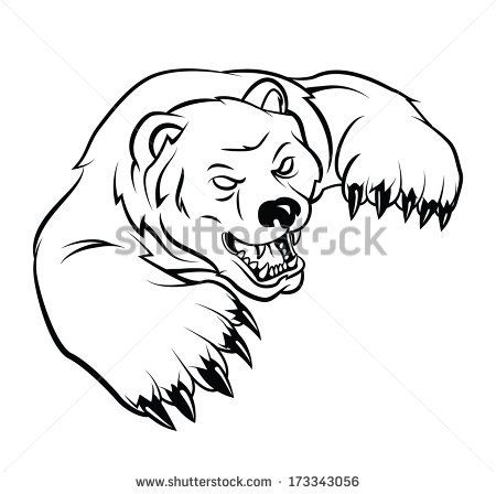 Grizzly Bear Head Drawing