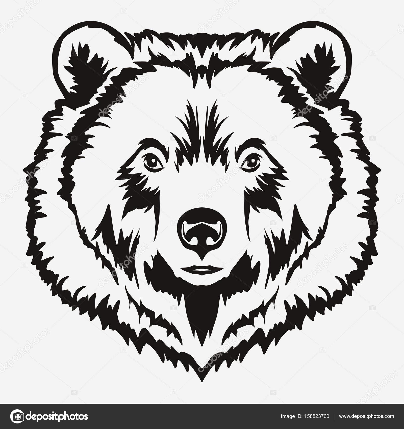 1600x1700 Bear Head Cartoon Vector Stock Vector Ambassador80