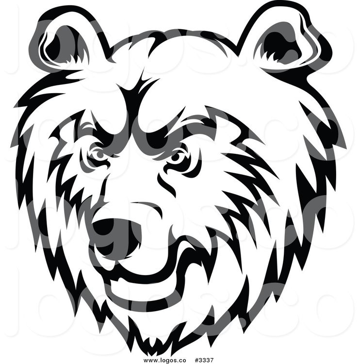 736x750 Face Clipart Grizzly Bear