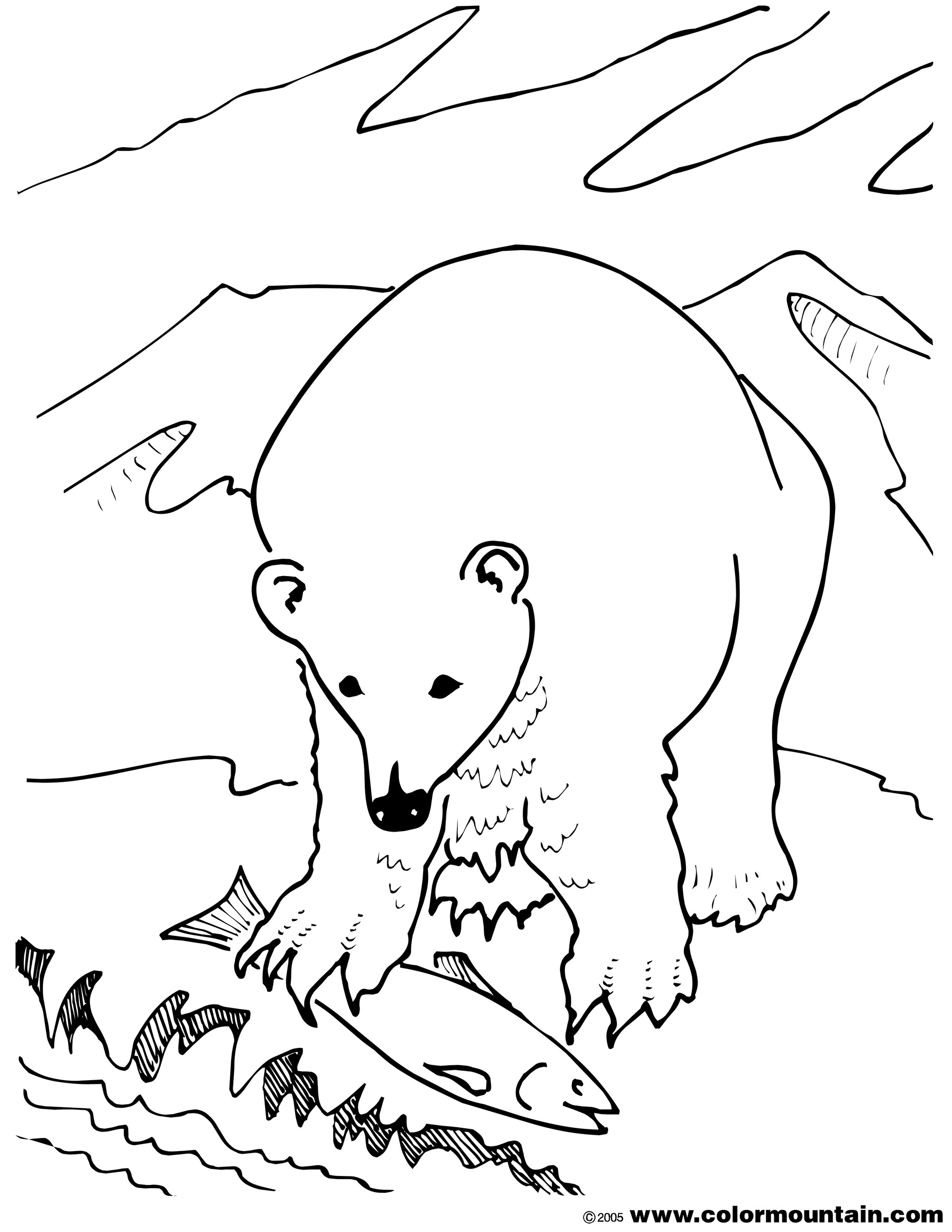 Grizzly bear head drawing at free for for Bear head coloring page