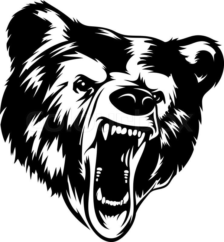 741x800 Grizzly Bear Head Black White Vector Illustration. It Can Be Used