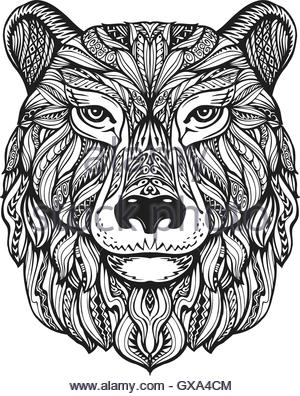 300x396 Grizzly Bear Head Mascot Isolated In White Background Stock Vector
