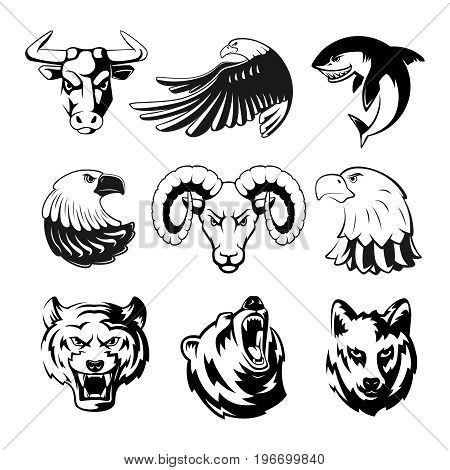 450x470 Grizzly Bear Images, Illustrations, Vectors