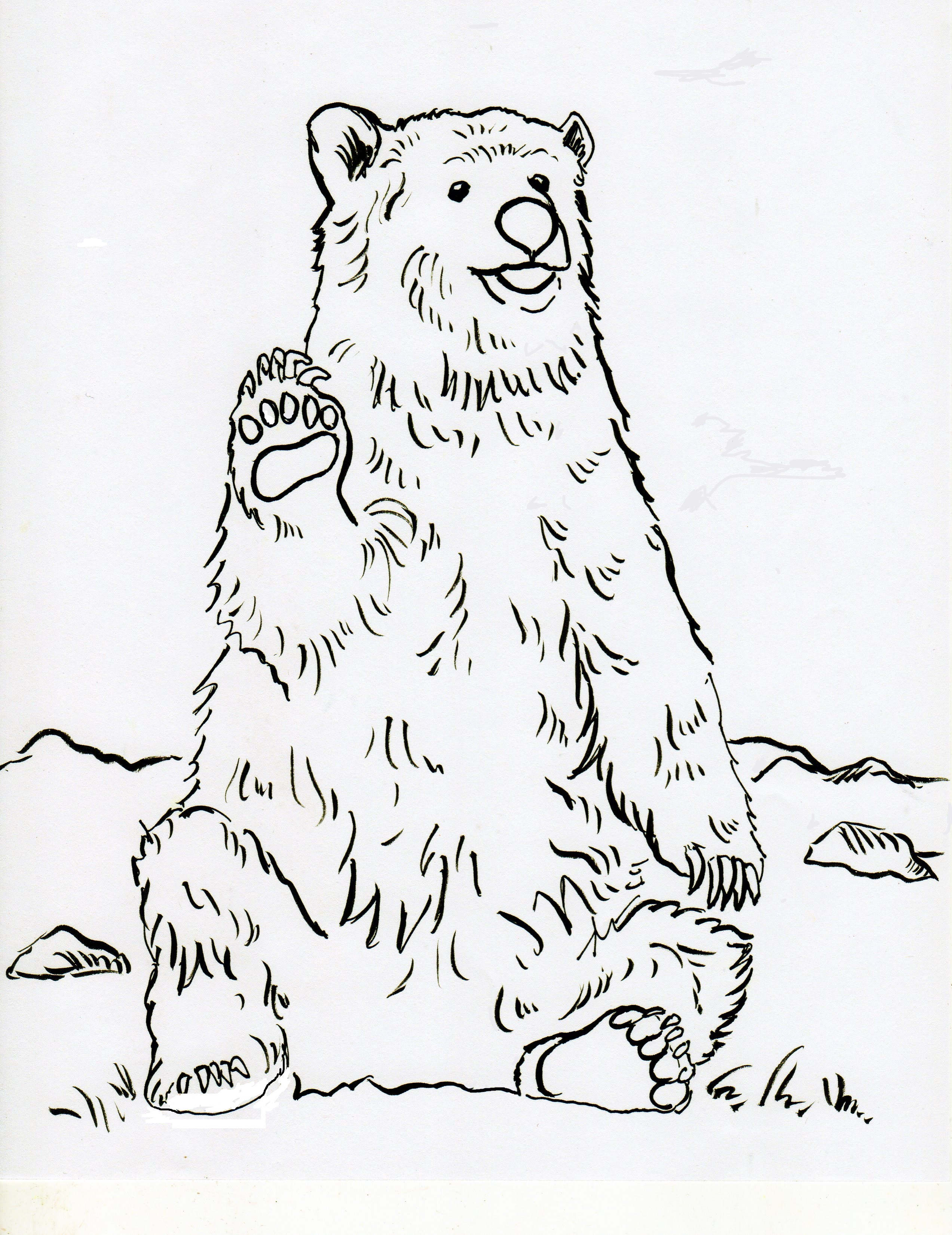 2545x3300 Grizzly Bear Coloring Page