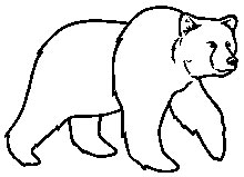 220x159 best photos of grizzly bear outline - Outline Of A Bear