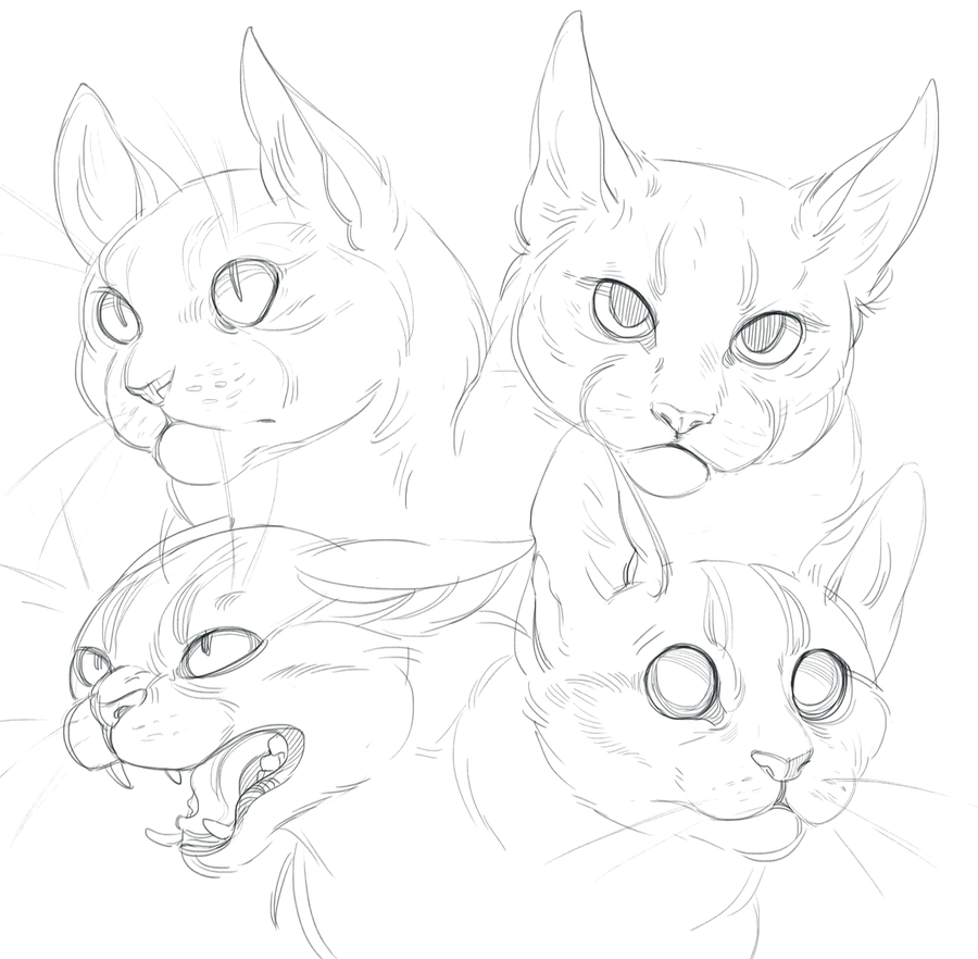 900x882 Cat Doodles By Shade On @