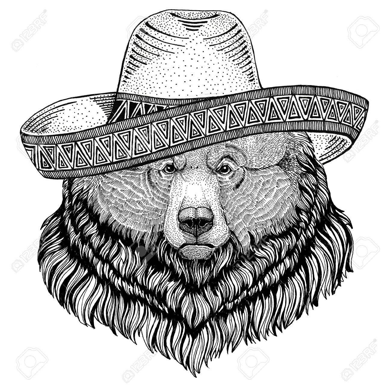 1300x1300 Grizzly Bear Big Wild Bear Wild Animal Wearing Sombrero Mexico