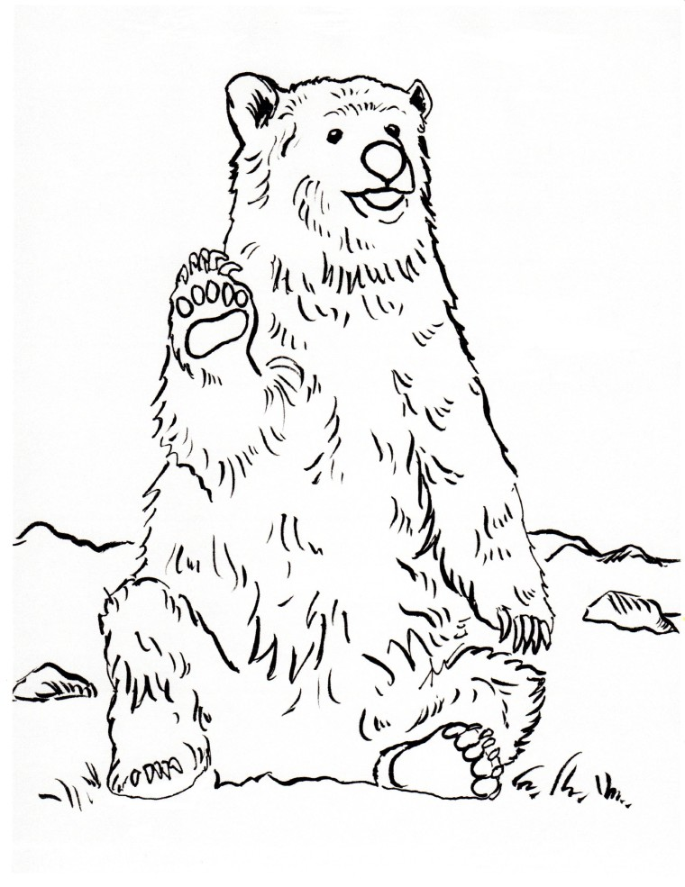 760x985 Grizzly Bear Coloring Page