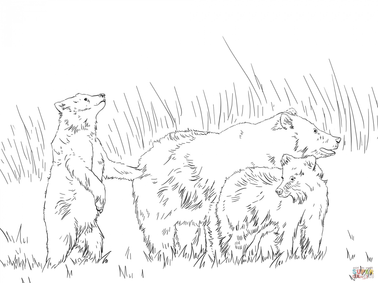 1280x960 Grizzly Bear Coloring Pages With Two Cute Cubs Page
