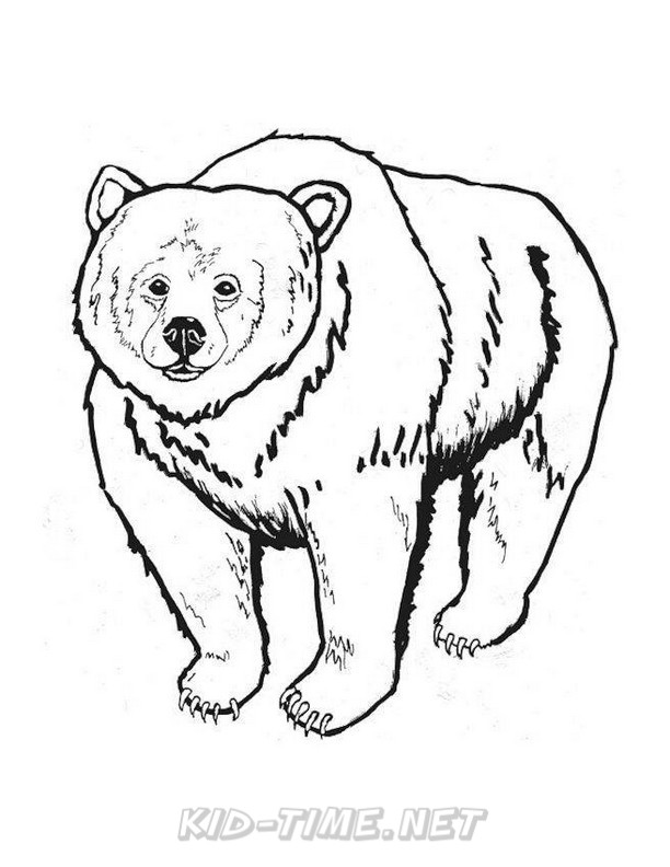 612x792 Grizzly Bear Coloring Pages 091.jpg Kids Time Free Coloring Book