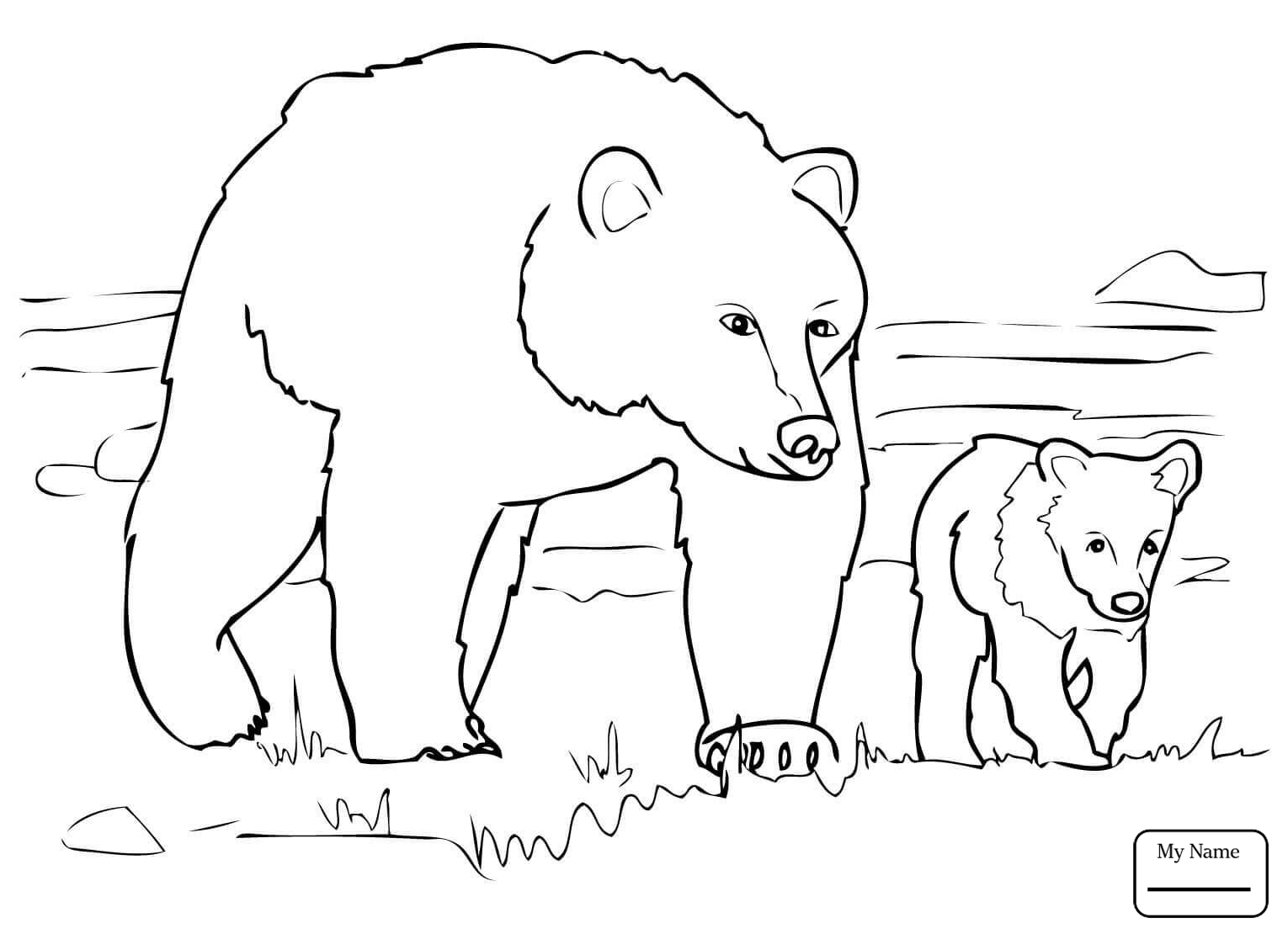 1530x1110 Mammals Grizzly Bear Family Grizzly Bears Coloring Pages