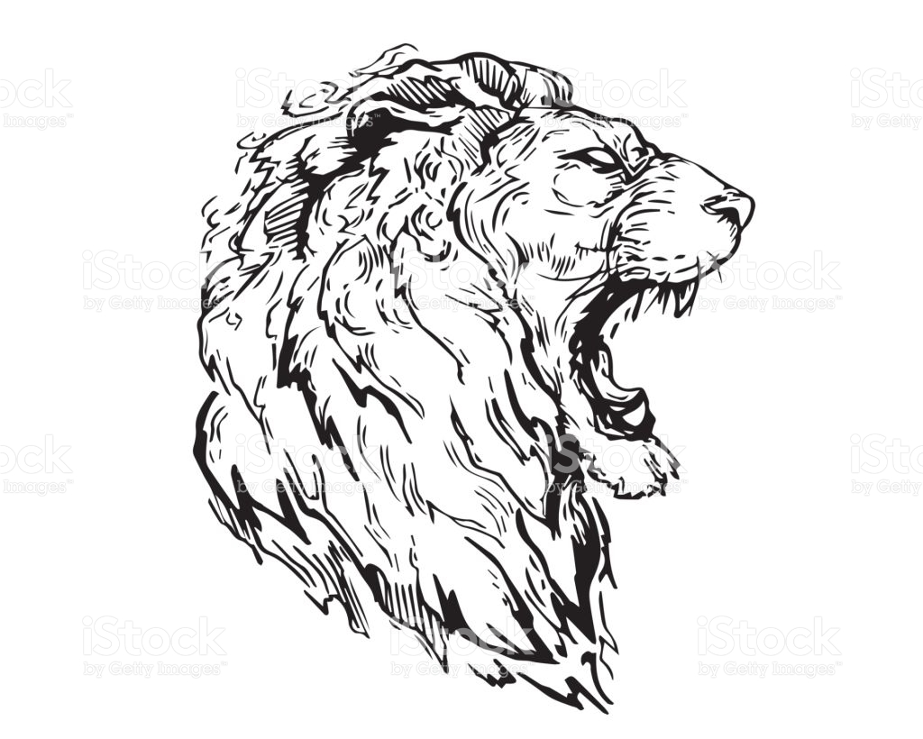 1024x820 Angry Lion Drawing Animal Stairs And Art