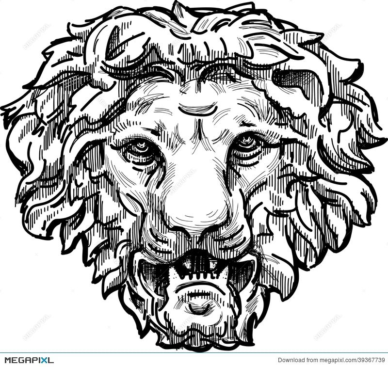 800x757 Snarling Lion Head Stock Photo 39367739