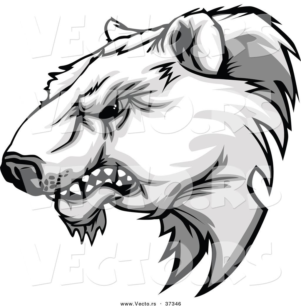 1024x1044 Drawn Polar Bear Fierce