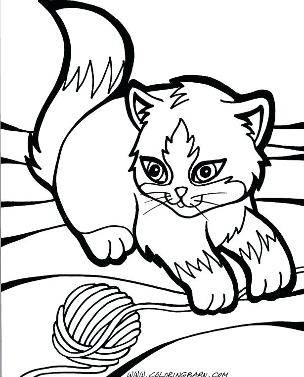 This is an image of Impeccable Grumpy Cat Coloring Page