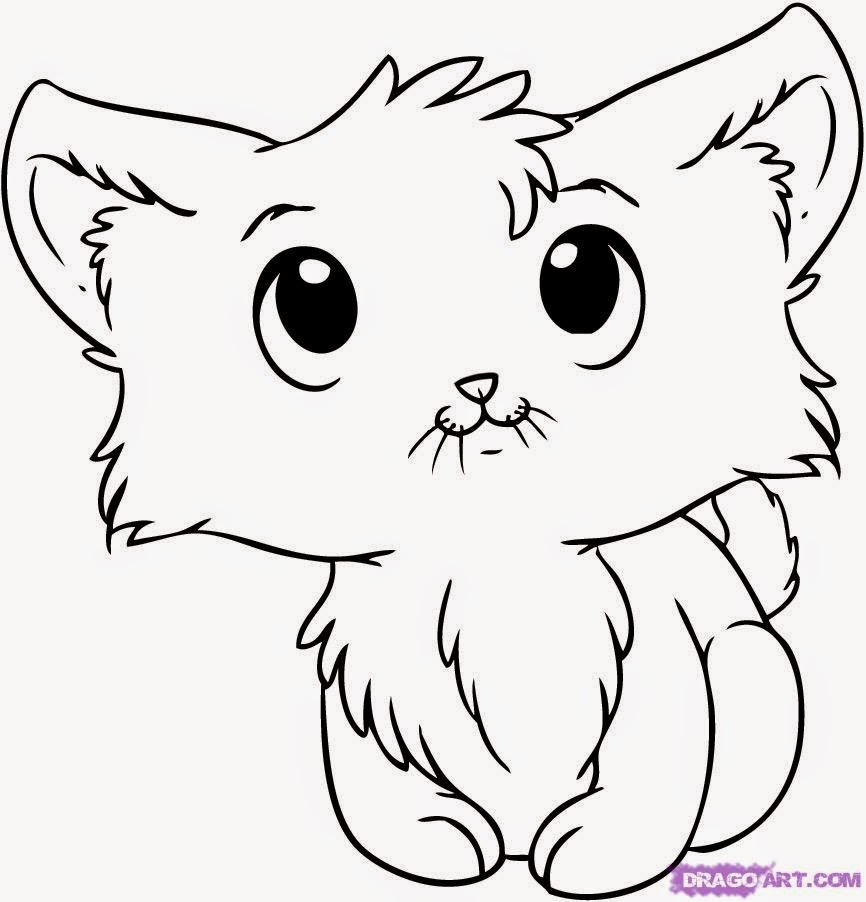866x902 Kitten Drawings