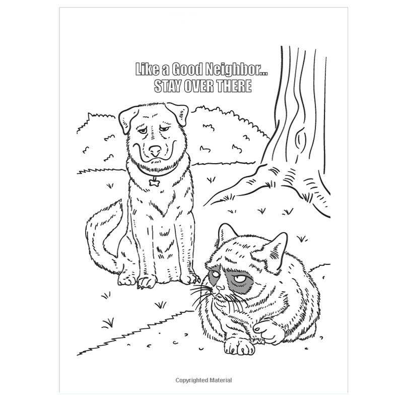 800x800 Drawn Grumpy Cat Kid Coloring Page
