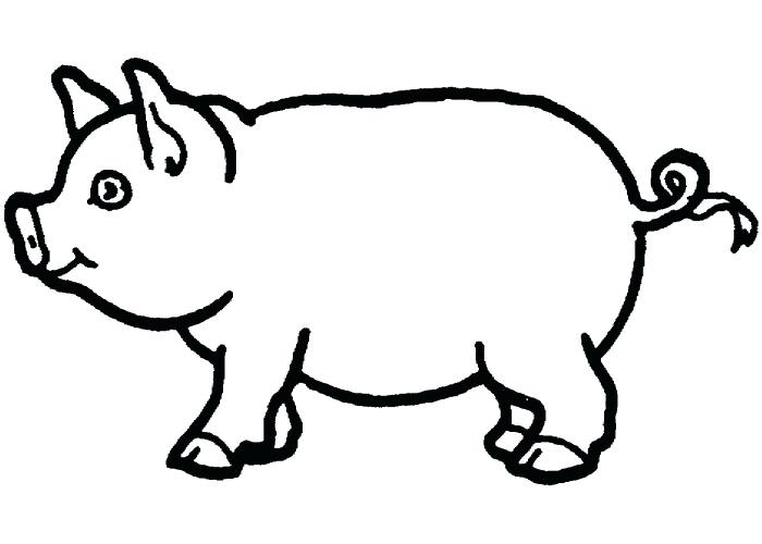 700x500 Pig Coloring Cute Pig Coloring Pages Guinea Pig Coloring Pages