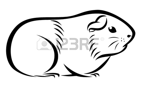 450x281 Stylized Guinea Pig Head Royalty Free Cliparts, Vectors, And Stock