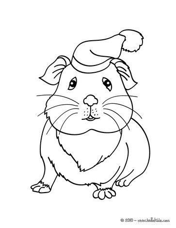 363x470 This Lovely Guinea Pig Wearing A Hat Coloring Page Is So Cute