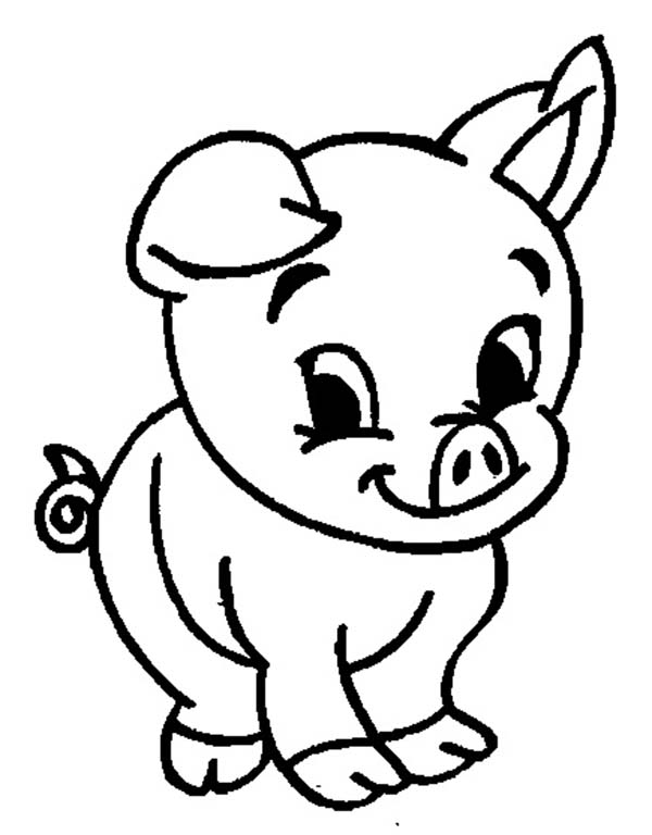 600x768 Coloring Page Pig Piggies