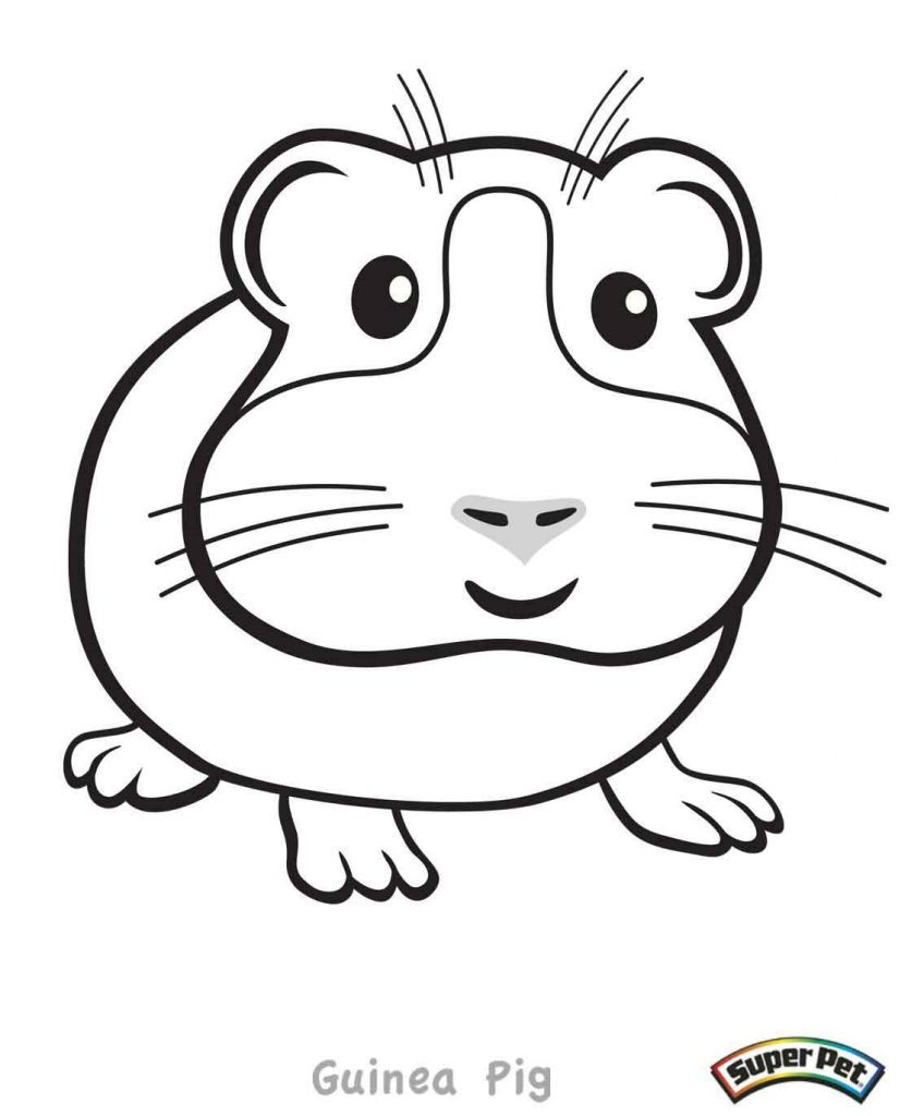 848x1024 Coloring Pages Of A Guinea Pig Coloring Page For Kids