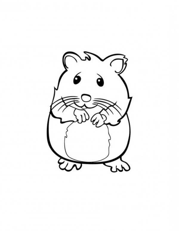 600x776 Cute Hamster In Guinea Pig Coloring Page Color Luna