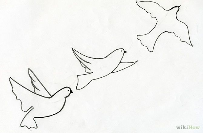 670x442 Photos Fly Bird Simple Drawing Easy Step,