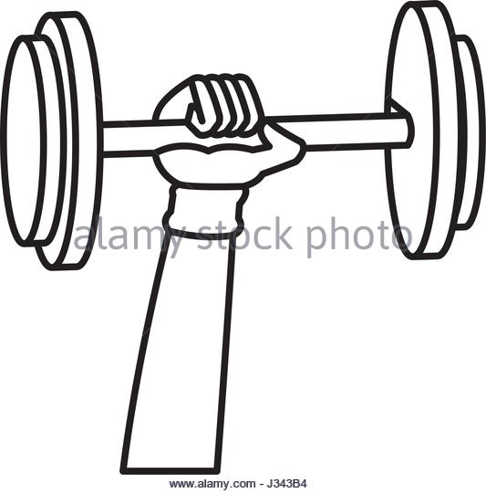 533x540 Equipment Gym Fitness Tool Outline Stock Photos Amp Equipment Gym