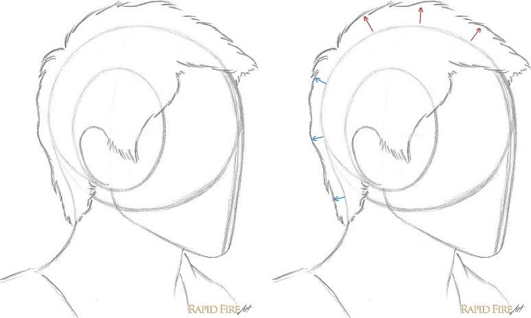 Hair Tutorial Drawing At Getdrawings Com