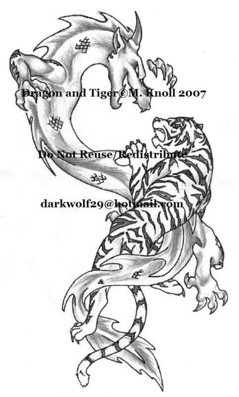 482x800 Dragon And Tiger By Thecandylandsniper