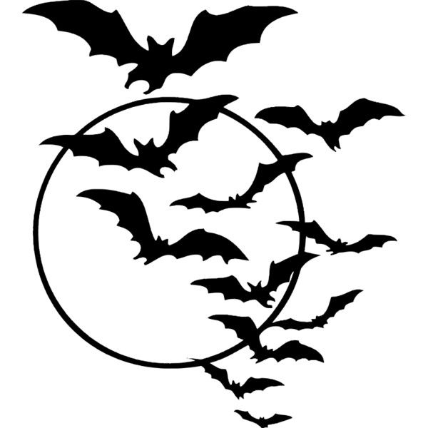Halloween Bats Drawing