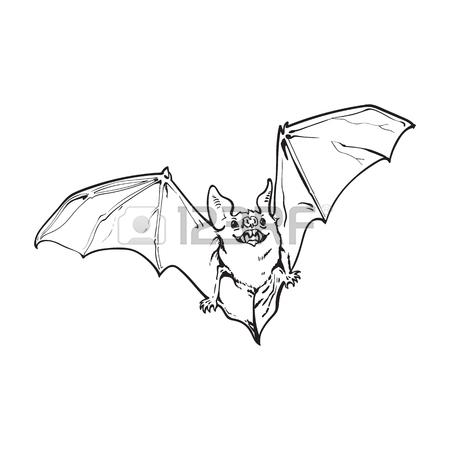 450x450 Scary Flying Halloween Vampire Bat, Sketch Style Vector