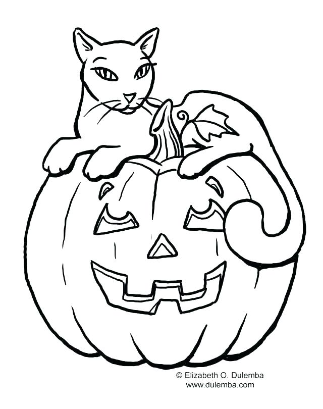 640x810 Halloween Cat Coloring Free Cat Coloring Pages Also Cats Coloring