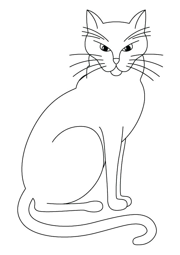 620x875 Halloween Cat Coloring Page Free Printable Pages